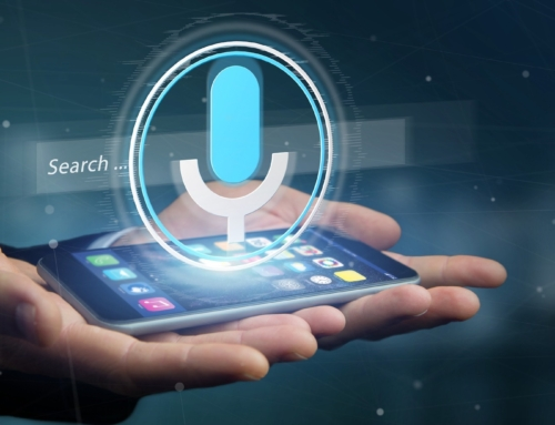 Voice recognition – easy but imperfect biometric identity verification